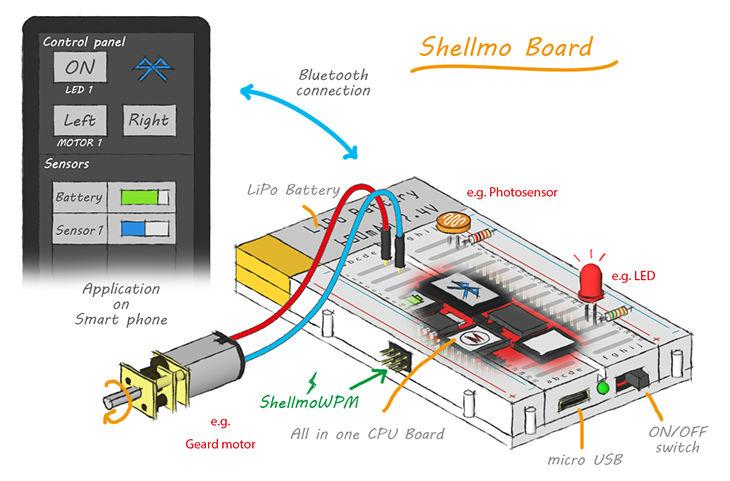 [Image: shellmoboard1.jpg]